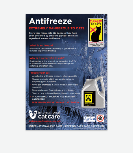 Antifreeze warning poster