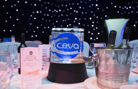 Nominations open for Ceva Animal Welfare Awards 2019