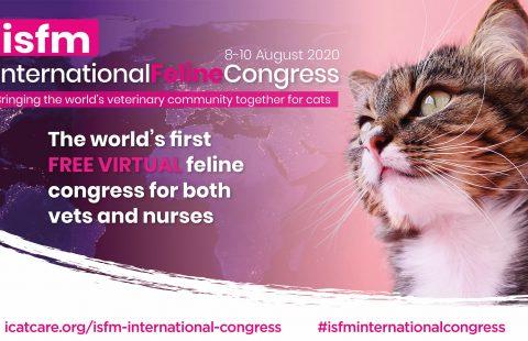 ISFM International Feline Congress: An innovation in CPD