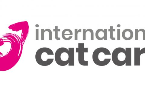 Linda Ryan to join iCatCare Cat Advocacy team