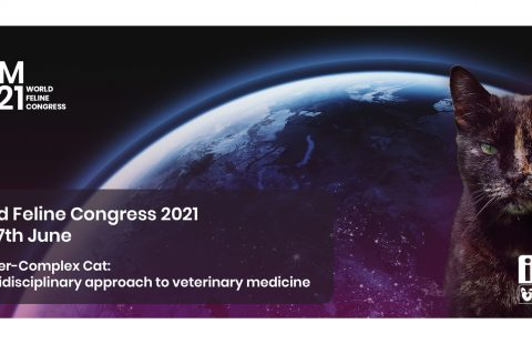 Explore the 'ever-complex cat' with the ISFM 2021 World Feline Congress