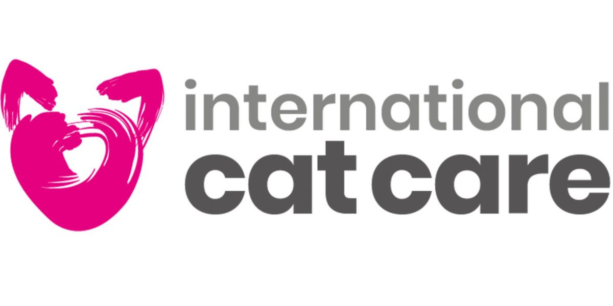 Steve Crow wins International Cat Care Outstanding Contribution to Animal Welfare Award