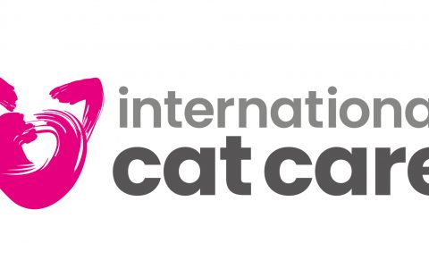 iCatCare's first Cat Carer Guide on blood transfusions now available